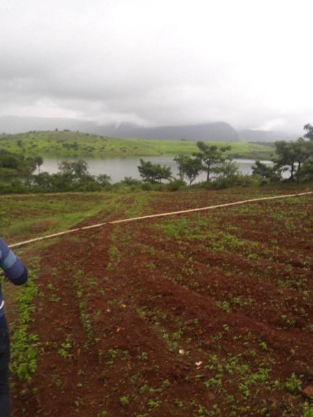 Residential Plot for Sale in Talegaon Dabhade, Pune - 20 Guntha