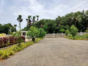 167 Sq. Yards Residential Plot for Sale in Bheemili, Visakhapatnam