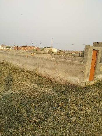 50 Sq. Yards Residential Plot for Sale in Sector 140A, Noida