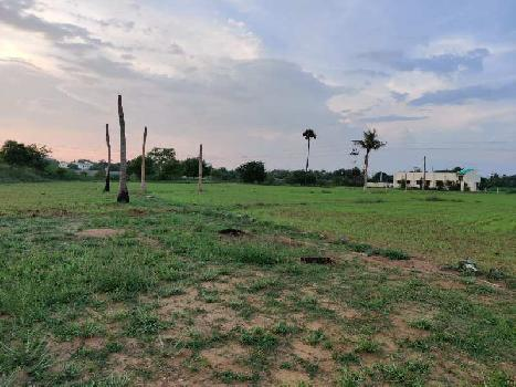 4 Ares Farm Land for Sale in Puliyur, Karur