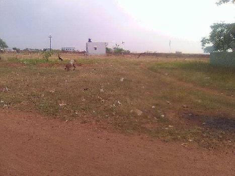75 Cent Commercial Land for Sale in Madampatti, Coimbatore