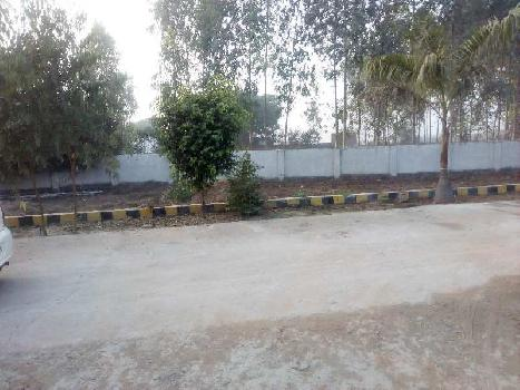 800 Sq.ft. Residential Plot for Sale in Jhusi, Allahabad