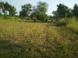 1.38 Acre Farm Land for Sale in Ichhawar, Sehore