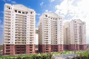 3 BHK Flat for Sale in Sector 82, Faridabad