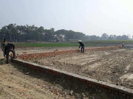 2 Acre Farm Land for Sale in Tikri, Gurgaon