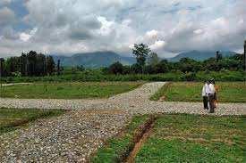 3 Acre Farm Land for Sale in Gairatpur Bas, Gurgaon