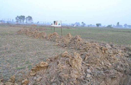 1200 Sq. Yards Residential Plot for Sale in Gairatpur Bas, Gurgaon