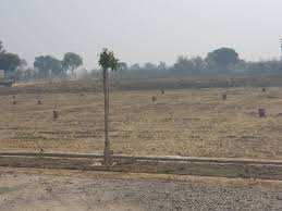 6 Acre Farm Land for Sale in Gairatpur Bas, Gurgaon