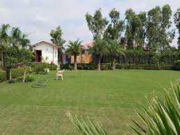 1 BHK 800 Sq. Yards Farm House for Sale in Gairatpur Bas, Gurgaon