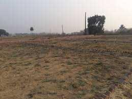 6 Acre Farm Land for Sale in Sohna Road, Gurgaon