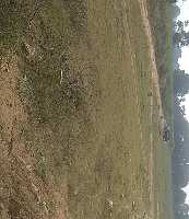 133 Sq. Yards Commercial Land for Sale in Tandur, Vikarabad