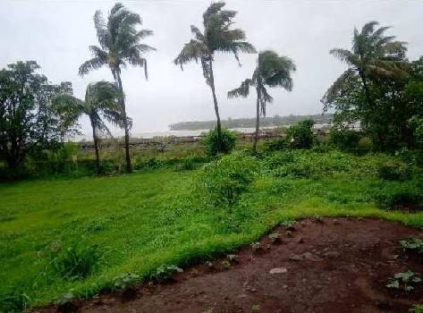 30 Guntha Residential Plot for Sale in Alibag, Raigad