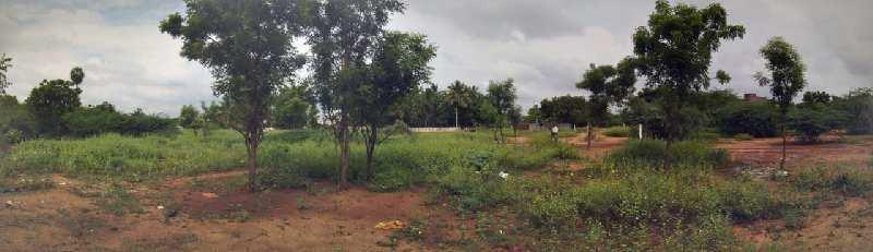 10000 Sq.ft. Residential Plot for Sale in KK Nagar, Tiruchirappalli