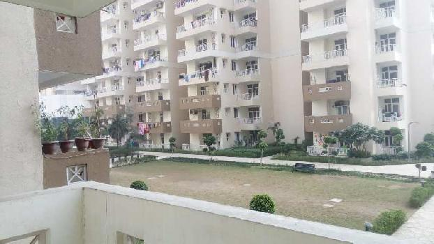 3 BHK 1525 Sq.ft. Residential Apartment for Rent in Techzone 4, Greater Noida