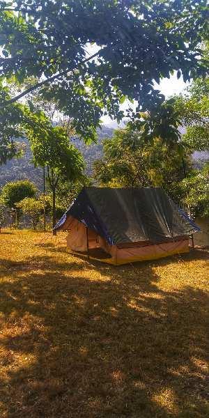 450 Sq. Yards Farm Land for Sale in Dholas, Dehradun