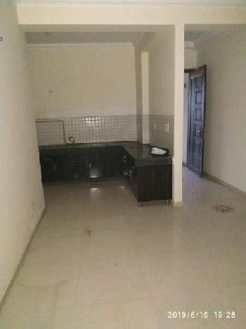 1 BHK 450 Sq.ft. Residential Apartment for Rent in Sector 50 Noida