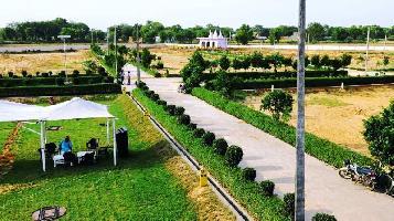150 Sq. Yards Residential Plot for Sale in Jewar, Gautam Buddha Nagar