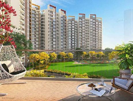 2 BHK 915 Sq.ft. Residential Apartment for Sale in Sector 102 Gurgaon