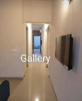 3 BHK 800 Sq.ft. Residential Apartment for Sale in Sector 78 Faridabad