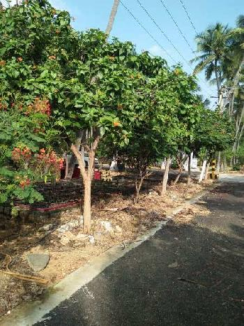 3486 Sq.ft. Residential Plot for Sale in Mettupalayam Road, Coimbatore