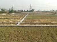 6 Acre Farm Land for Sale in Nanak Heri Delhi