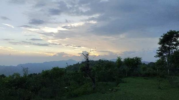 9000 Sq.ft. Farm Land for Sale in Morni Hills, Panchkula