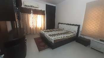 2 BHK 21000 Sq.ft. Residential Apartment for Rent in Nehru Enclave, Gomti Nagar, Lucknow