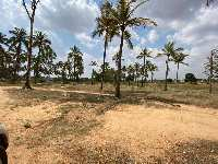25 Acre Farm Land for Sale in Chikkaballapur, Bangalore