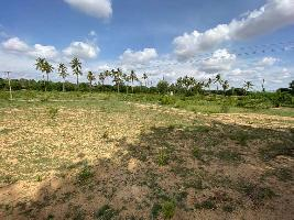 13 Acre Farm Land for Sale in Chikkaballapur, Bangalore