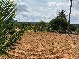 11 Acre Farm Land for Sale in Chikkaballapur, Bangalore