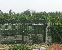 8.5 Acre Farm Land for Sale in Doddaballapur, Bangalore