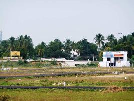 271 Cent Residential Plot for Sale in Pettai, Tirunelveli