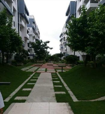 5 BHK 2300 Sq.ft. Residential Apartment for Rent in Bawadia Kalan, Bhopal