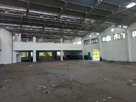 50000 Sq.ft. Warehouse for Rent in Phase 2 Noida