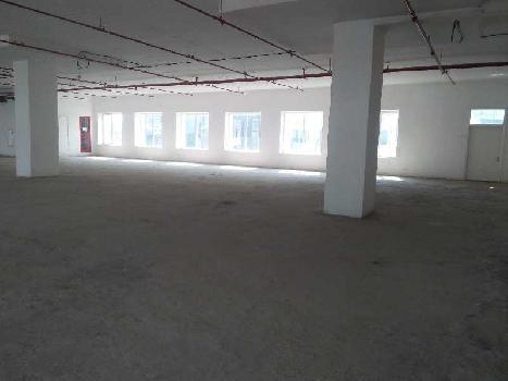 650000 Sq.ft. Factory for Rent in Udyog Vihar Phase 3, Greater Noida