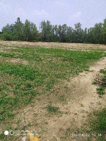 7 Bigha Industrial Land for Sale in Chilkana Road, Saharanpur
