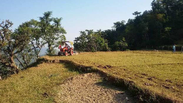 2100 Sq. Yards Farm Land for Sale in Morni Hills, Panchkula