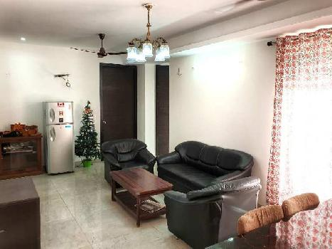 3 BHK 1329 Sq.ft. Residential Apartment for Rent in Jagatpura, Jaipur