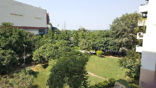 5 BHK 7000 Sq.ft. Residential Apartment for Rent in Ambience Mall, Gurgaon