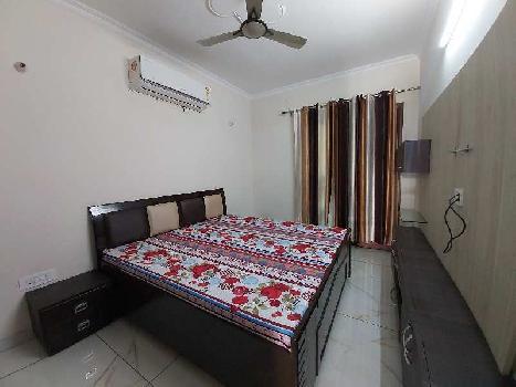 3 BHK 1850 Sq.ft. Builder Floor for Rent in Sector 21 Chandigarh