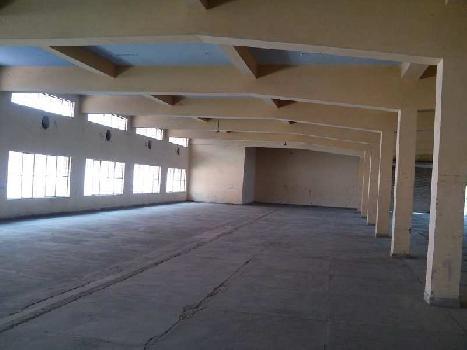 8000 Sq. Meter Industrial Land for Sale in Riico Chowk, Bhiwadi
