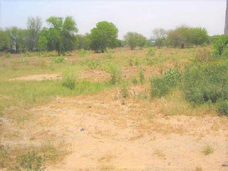 46 Acre Farm Land for Sale in Haileymandi, Gurgaon