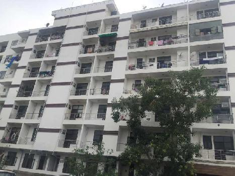 1 BHK 530 Sq.ft. Residential Apartment for Sale in Sector 73 Noida