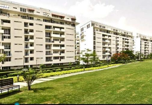 4 BHK 2950 Sq.ft. Residential Apartment for Sale in Sector 50 Gurgaon