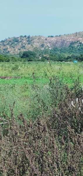 23 Guntha Farm Land for Sale in Nandi Hills, Bangalore