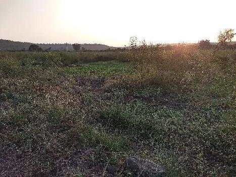 2 Acre Farm Land for Sale in Teosa, Amravati