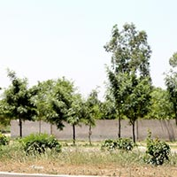 28000 Sq. Yards Commercial Land for Sale in Dera Bassi