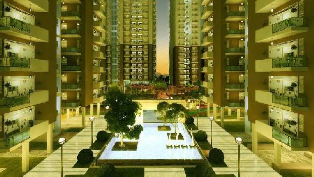 2 BHK 803 Sq.ft. Residential Apartment for Sale in Noida Extension