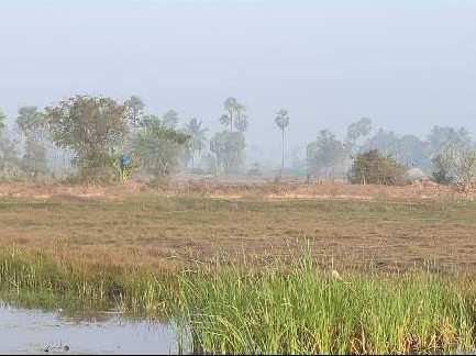 75 Cent Farm Land for Sale in Machilipatnam, Krishna