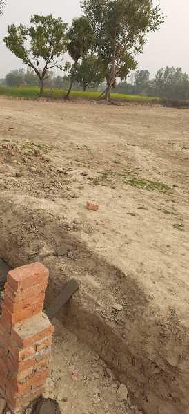 1000 Sq.ft. Residential Plot for Sale in Jhalwa, Allahabad